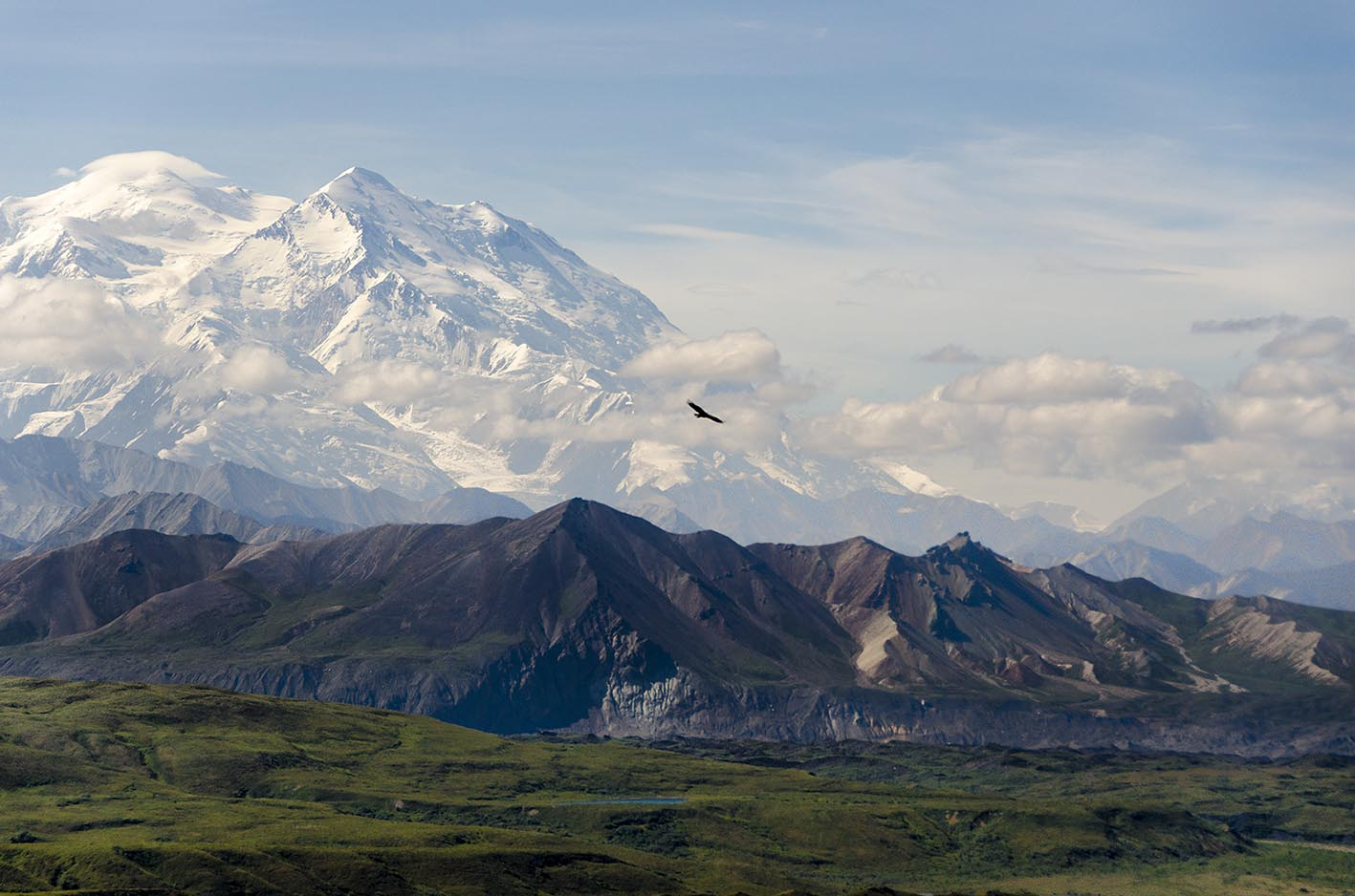 Viaje: Canoa y trekking en Alaska, verano de 2013. Descripción: En el Parque Nacional Denali (Alaska) se eleva el monte McKinley hasta casi 6200 metros sobre el nivel de mar, el más alto de América del Norte.  ¡Quién pudiera sobrevolarlo como si fuera un águila para verlo en todo su esplendor! Categoría: Mi fotaza.