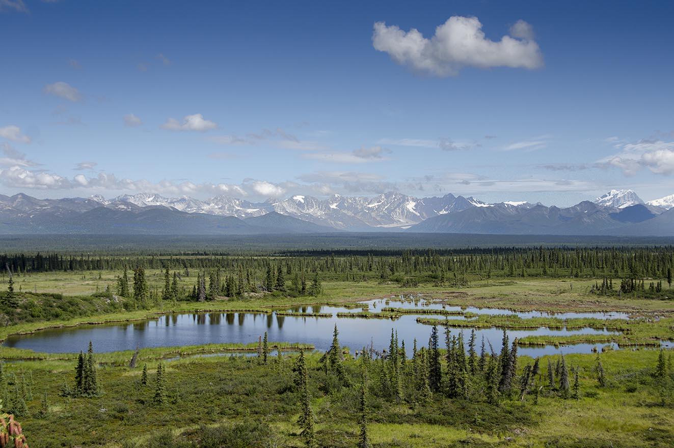 Viaje: Canoa y trekking en Alaska, verano de 2013. Descripción: En la foto, tres de los elementos principales que componen la iconografía de Alaska: Lagos, abetos y montañas. Al fondo, la Cordillera de Alaska en ruta por la carretera. Categoría: Mi fotaza.