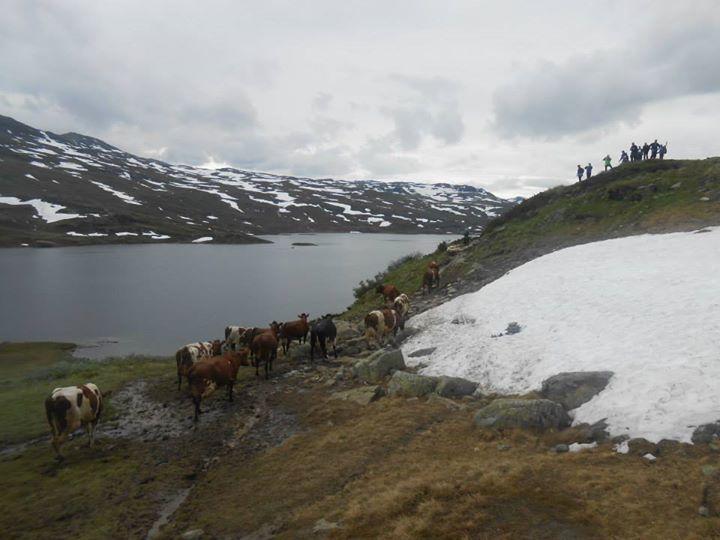 Sole Jiménez Molina – Foto del viaje a Noruega
