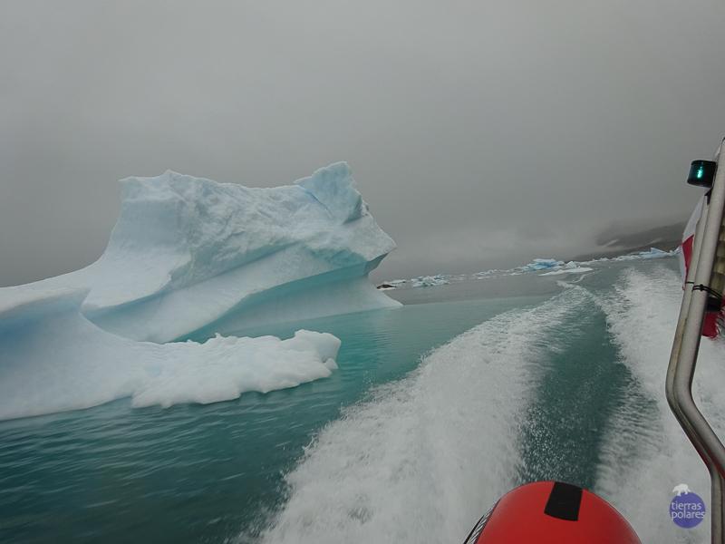 Viaje donde fue tomada la foto:  La ruta de Erik el rojo (Groenlandia) Breve descripción de la foto:  Dejo atrás los días del kayak y comienzo el trekking; por suerte, sigo en contacto con los fiordos y sus icebergs.  Nil nos lleva hacia Fletanes,  el campamento  del hielo; de repente, nos sorprende escorando la zodiac y girando alrededor de un iceberg. Todos rompemos en un aplauso: ¡Bravo!  Categoría en la que participa:  Foto más divertida