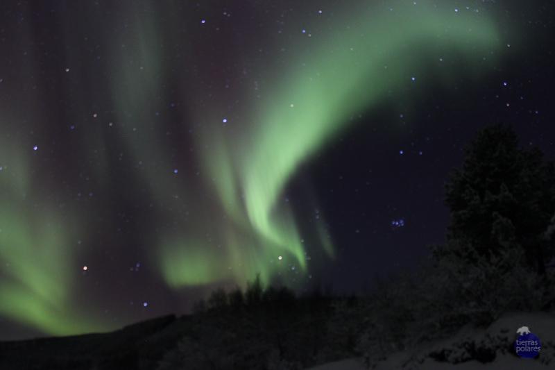 FOTO 1 – AURORA BOREAL •Nombre y apellidos del autor:  Alfredo Martín Cercadillo •Viaje donde fue tomada la foto:  Noruega 2015 - Lofoten, auroras boreales y trineo de perros •Breve descripción personal de la foto: A punto de desistir, finalmente apareció esta colorida aurora boreal. ¡Grandioso! •Categoría de la foto en la que participa: Mi fotaza