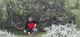 Carlos Abad: Mi relato en Groenlandia| Concurso #ViajerosPolares