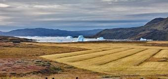 Jordi Zaragoza: Mi fotaza en Groenlandia   Concurso #ViajerosPolares