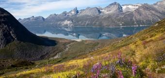 Ferran Perxas – Tasermiut, Groenlandia.